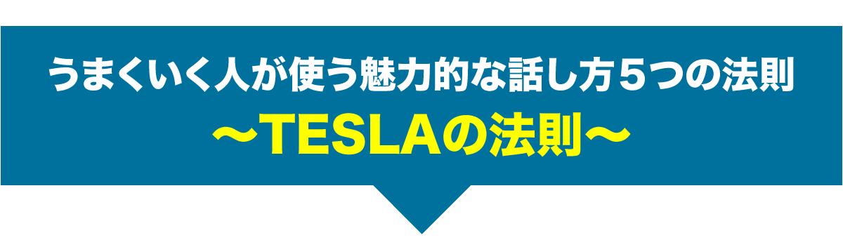 うまくいく人が使う魅力的な話し方5つの法則 〜TESLAの法則〜